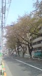 image/2009-04-12T13:03:471